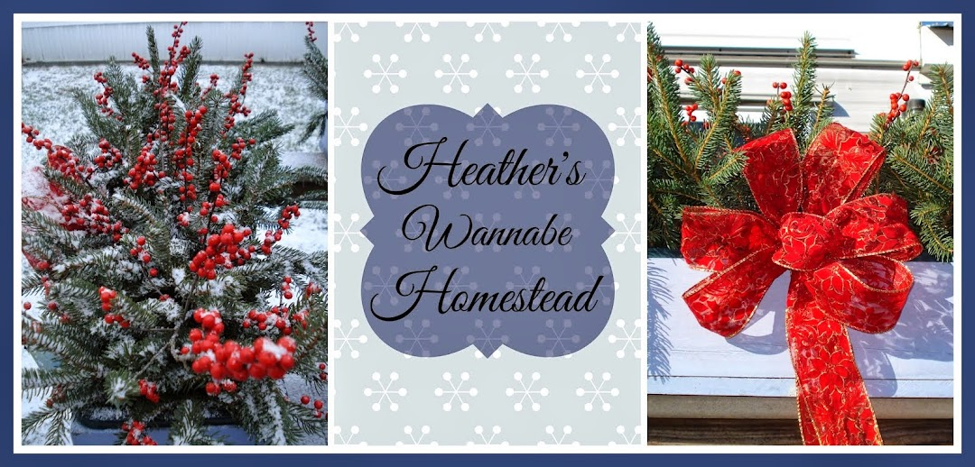 Heather's Wannabe Homestead