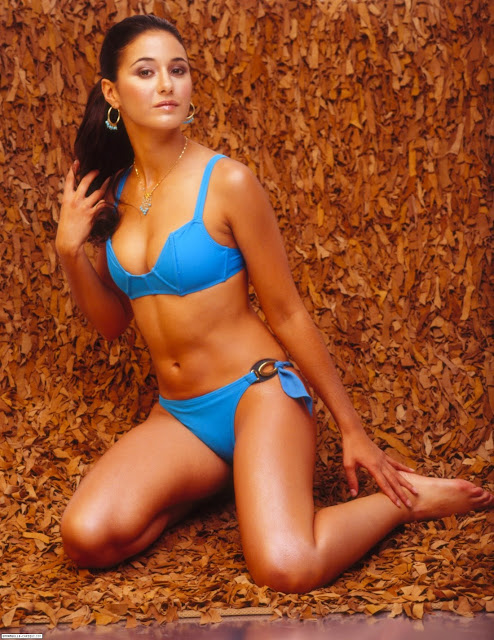 Emmanuelle Chriqui in Sweet Summer Serenely Blue Bikini