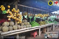 Fresh Fruits from Davao Region Philippines (Maxmedia Enterprise)