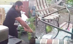 Ali cuts the watermelon