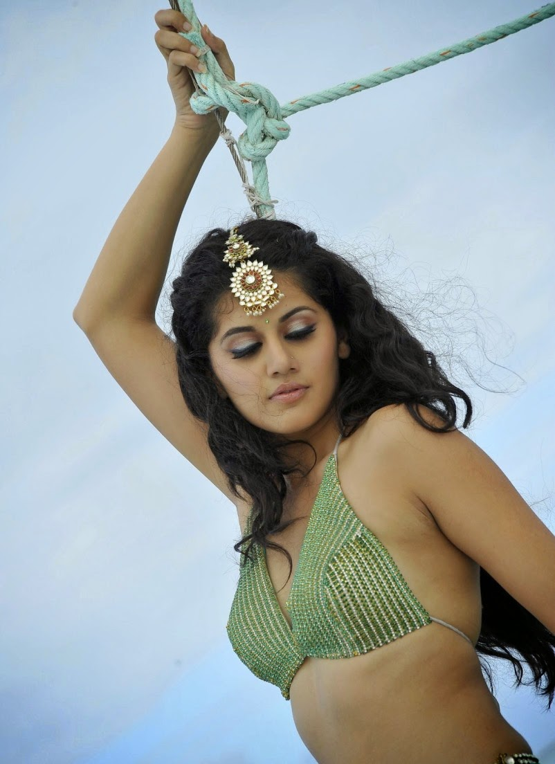 Tapsee In Mogudu Telugu Movie Glamours Photos