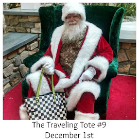 The Traveling Tote #9 -Dec 1st