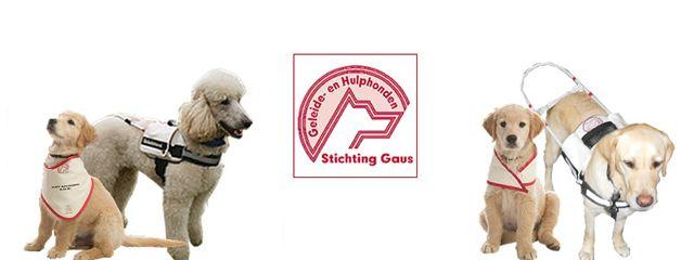 Stichting Gaus Geleide en Hulphonden