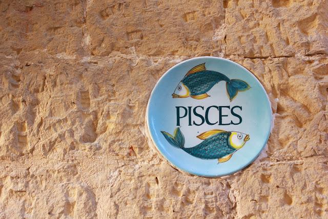 Pisces - Foto di Elisa Chisana Hoshi