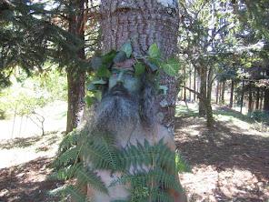 O Homem Verde