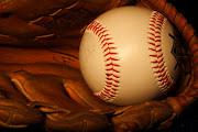 It has been nearly two weeks since the tragic death of baseball fan Shannon .