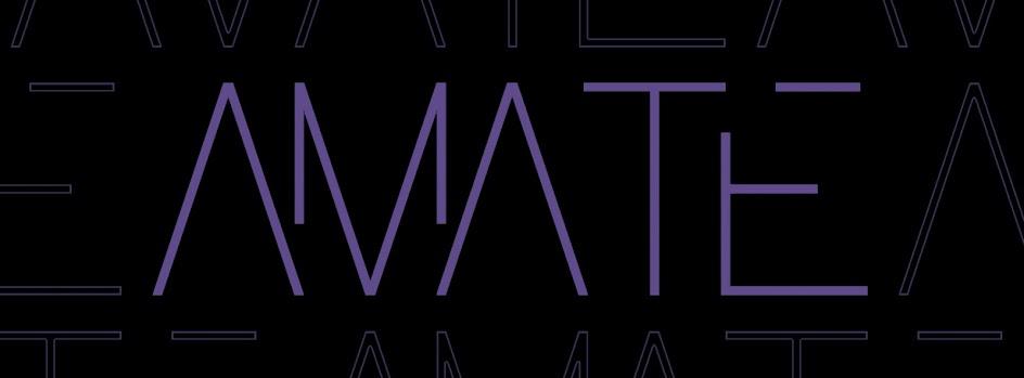 AMATE Team