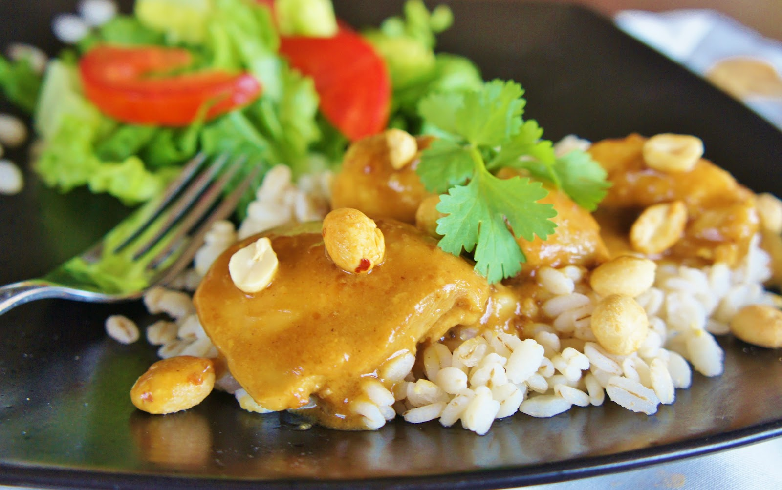Slow Juicer Currys : EASY Slow Cooker (crock-pot) Thai Chicken with Peanut ...