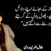 2014 Mevlana Rumi Quotes
