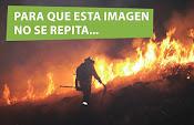 Contra los incendios,