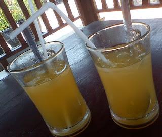 khasiat dan resep minuman jeruk, jus jeruk blender, jeruk peras, resep jeruk