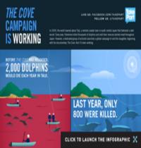 Salvamento de Delfines