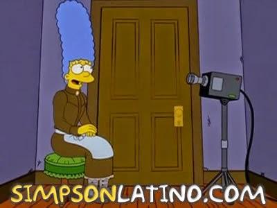 Los Simpson 14x05