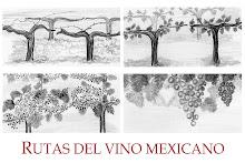 Rutas del Vino Mexicano