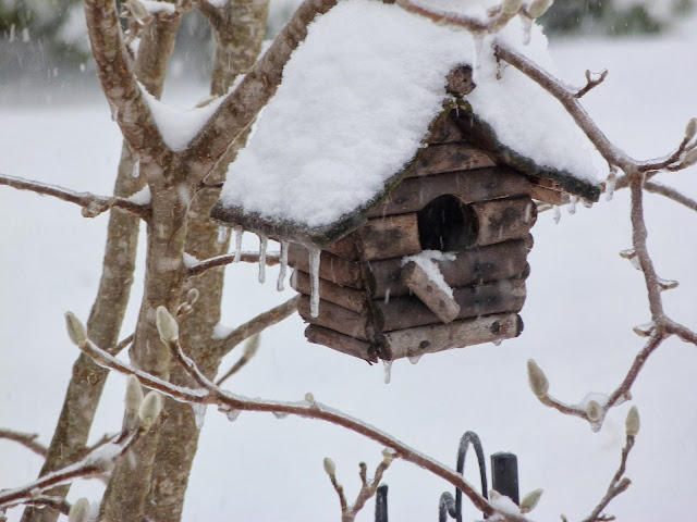 Ozarks birdhouse