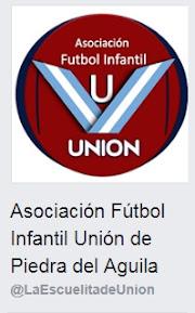 Fútbol Infantil Unión PDA