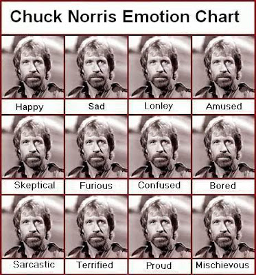 Chucknorrisemotionchart funny pictures emotion charts