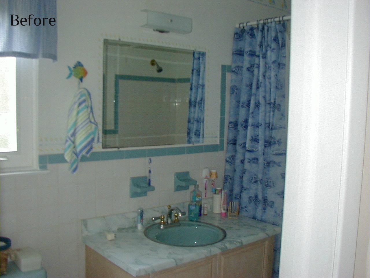 Appledale designs the hall bath for Hall bathroom ideas