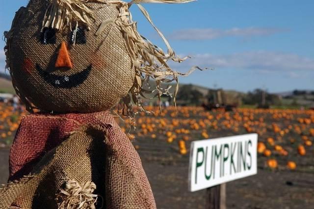 Megapost 10 fiestas que se celebran en el mes de octubre