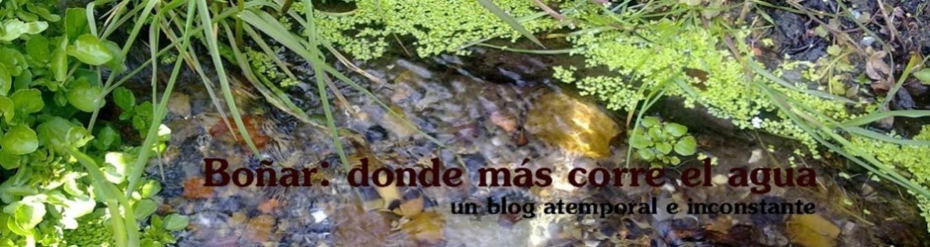 BOÑAR: DONDE MAS CORRE EL AGUA