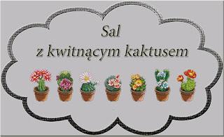 Sal z kaktusem
