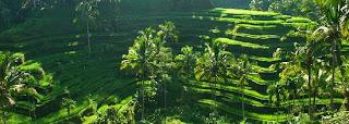 16 Tempat Wisata Yang Paling Menarik  di Bali