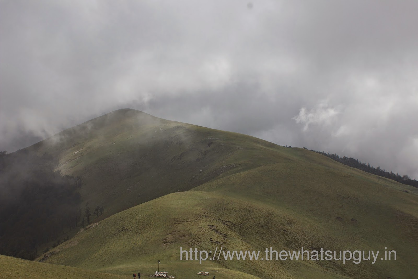 Ali-Bugyal-Views-Roopkund-Trek-With-India-Hikes-Day-2