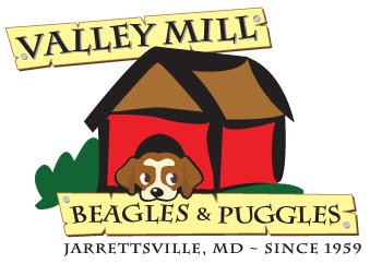 Valley Mill Puggles