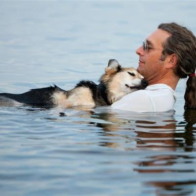 JOHN UNGER IS HOLDING HIS DOG IN HIS ARMS IN THE WATER TO MAKE THE DOG FALL ASLEEP BECAUSE THE DOG HAS ARTHRITIS AND ONLY THE COLD WATER CAN RELIEVE HIS PAIN AND ALLOW HIM TO FALL ASLEEP