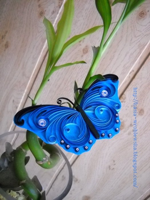 Beautiful butterfly paper quilling designs creative art for Paper art butterfly