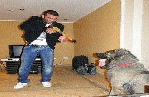 كلب عماد متعب يحدث ضجة في مصر بسبب ثمنه الخيالي
