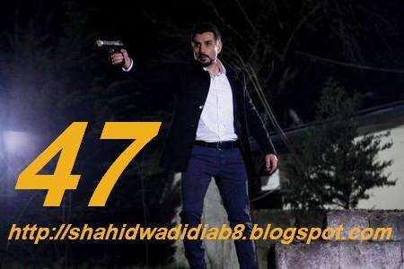 http://shahidwadidiab8.blogspot.com/2014/03/wadi-diab-8-ep-47-219.html