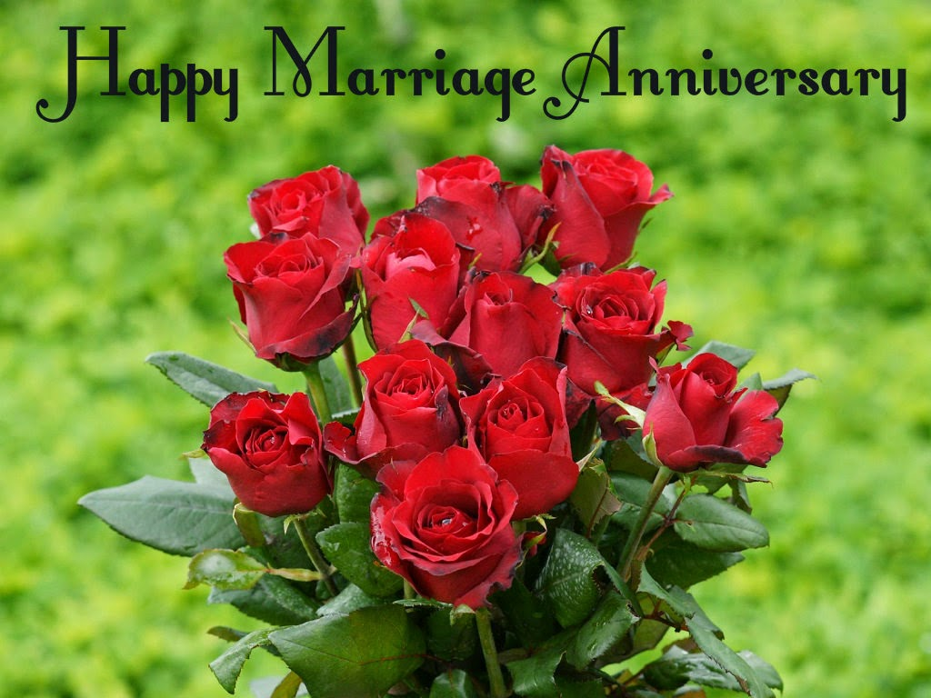 Roses happy anniversary hd inspiring quotes and words in life