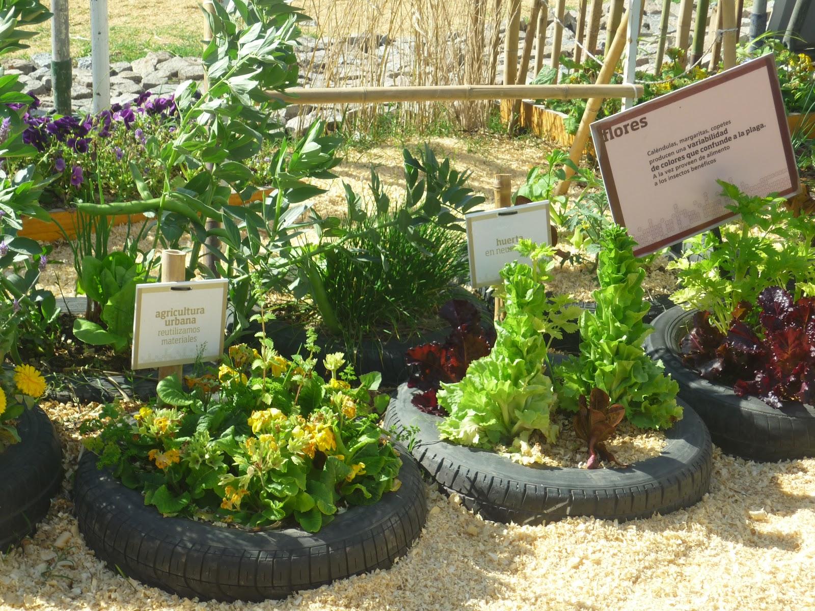 Boutiquedehuerta 100 cubiertas reciclando canteros en for Canteros de jardin