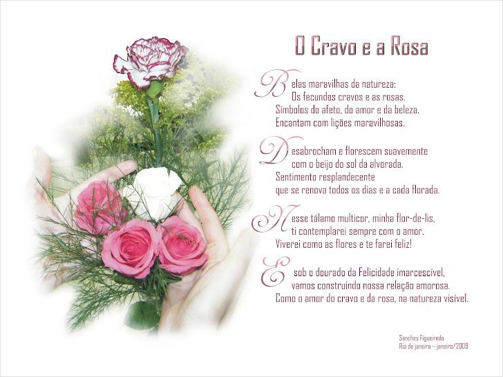 Belas maravilhas da natureza sem fim: O Cravo, a Rosa e a minha Flor de Lis.