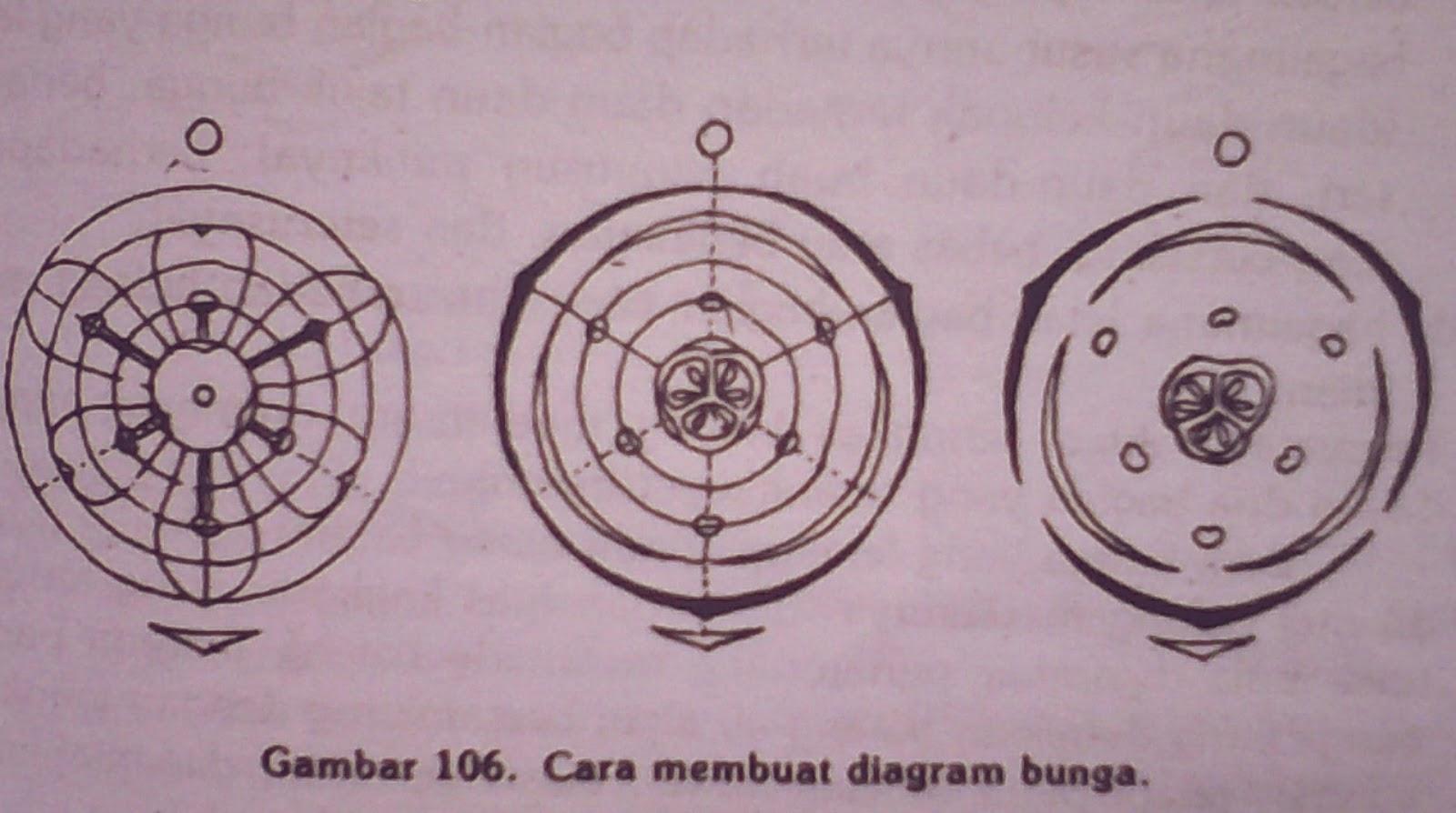 Tugas morfologi tumbuhan jika dari bunga yang hendak kita buat diagramnya telah kita tentukan kedua hal tersebut kita mulai dengan membuat sejumlah lingkaran yang konsentris ccuart Image collections