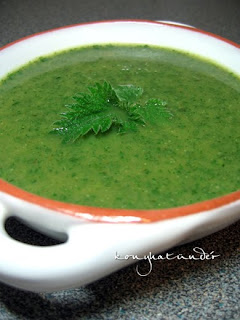 Irish nettle soup
