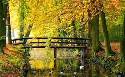jambatan penghubung kasih sayang antara insan