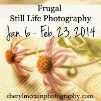 Frugal Still LIfe Photographer