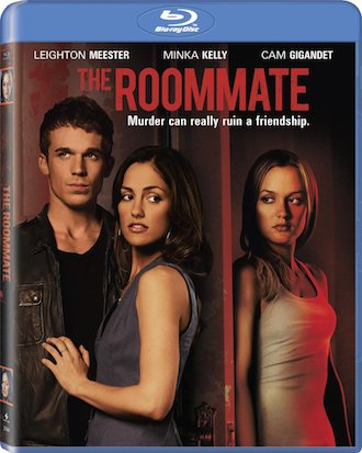 The Roommate 2011 Dual Audio Hindi BluRay Download