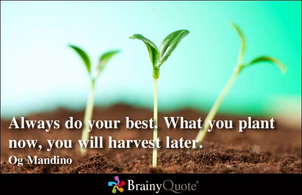 Motivational quotes for picture