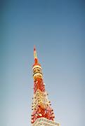 東京タワー (東京タワー )