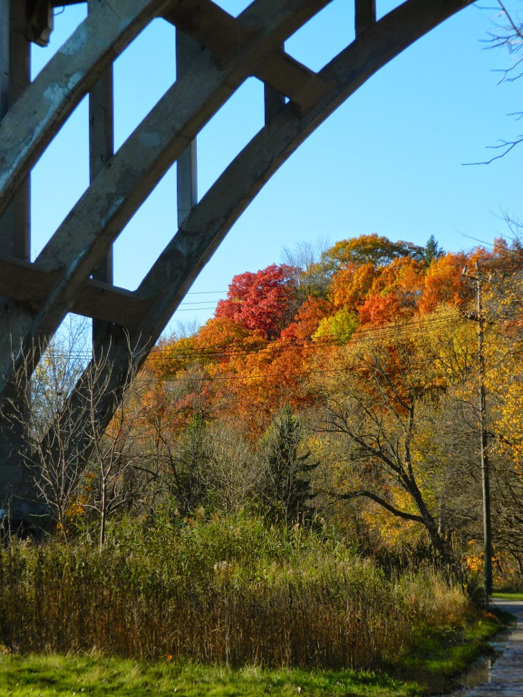 O'Connor Drive bridge Taylor Creek Park by garden muses-not another Toronto gardening blog