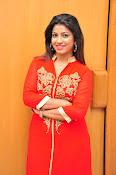 Geethanjali glam pics-thumbnail-21