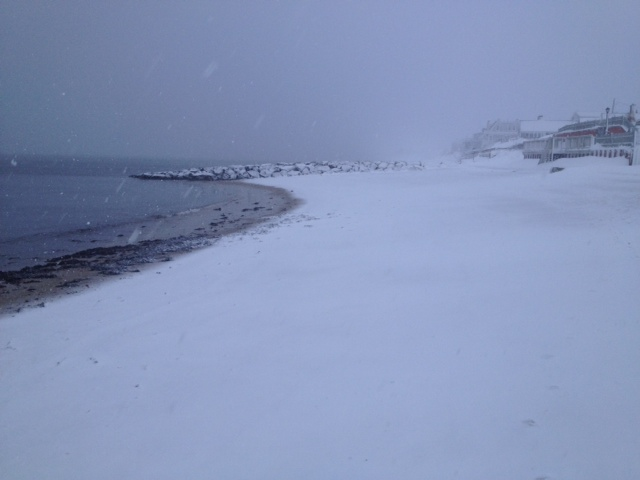 cape cod blizzard