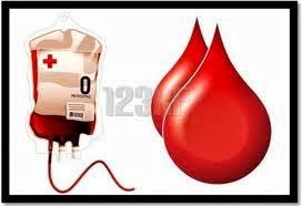 Cara Menyembuhkan Kurang Darah