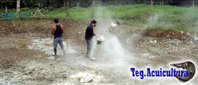 Tegnologia En Acuicultura Siembra De Peces
