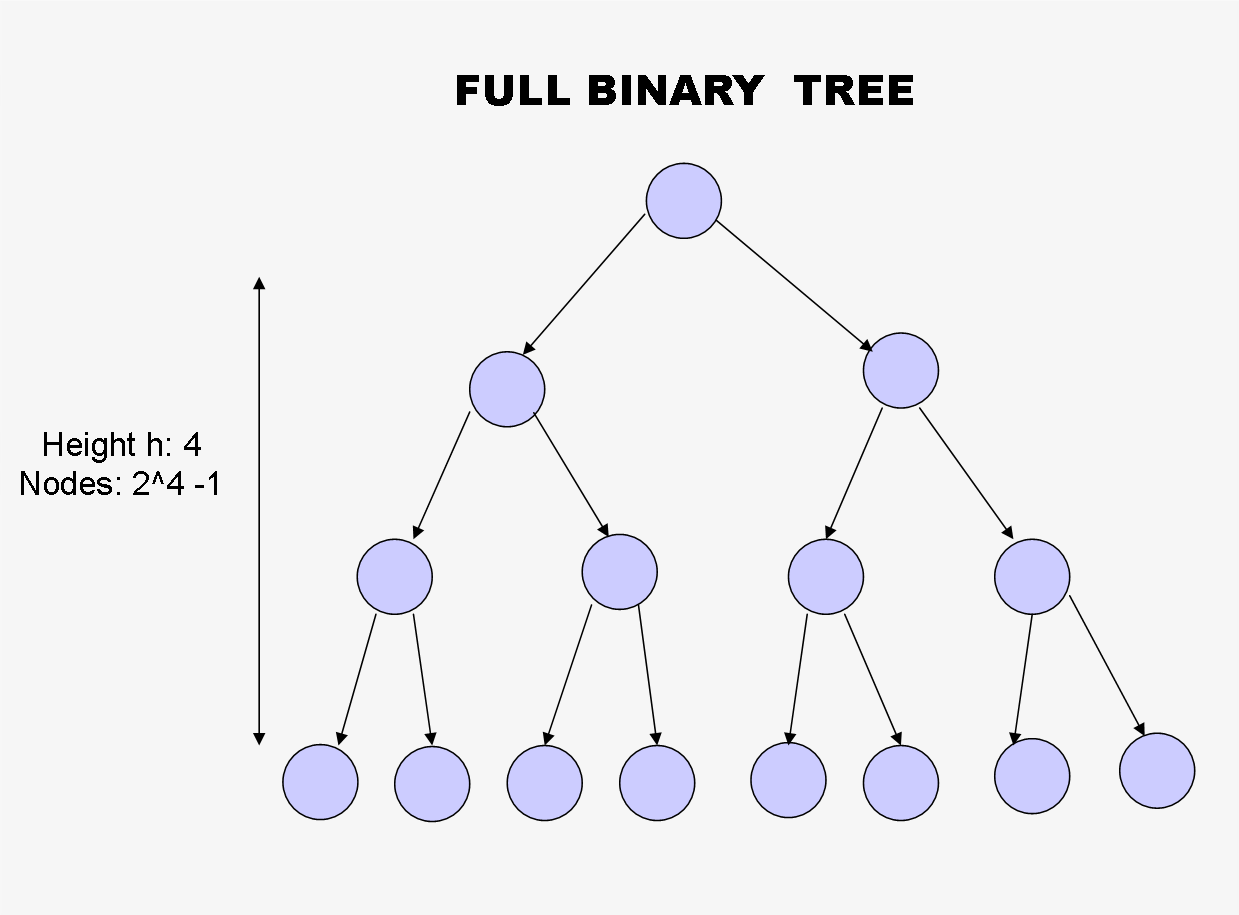 Complete binary tree height 97