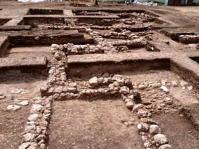 Stone Age site in Israel yields earliest evidence of legume cultivation