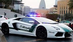 http://www.aluth.com/2014/02/dubai-police-car.html